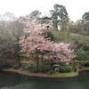 地図子、神田川を歩く -4/5 文京区境から外堀合流地点まで-