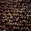 「価値の遠近法」という教養−鷲田清一による大阪大学卒業式式辞より−