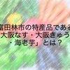 富田林市の特産品である「大阪なす・大阪きゅうり・海老芋」とは?
