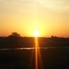 朝の散歩で「夜明け」を願う