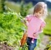子供も喜ぶ、自然食レストラン。