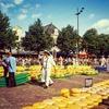 オランダ旅「チーズは宝物!アルクマールを歩く」