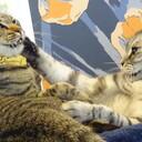 猫でも分かる法律(薬学編)
