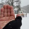 菅平高原だけ雪が降っているという不思議な冬だから