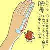 小腸経(SI)4  腕骨(わんこつ)