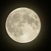 今年最後の満月○ふたご座満月
