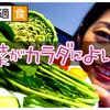 056食目「YouTube ep004 野菜がカラダによい理由【適材適食】」