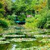 北川村「モネの庭」マルモッタンとは?