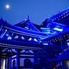 鎌倉唯一の紅葉ライトアップの長谷寺をお見逃しなく!