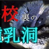 【自然】滝沢鍾乳洞【動画】