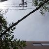 作曲工房 不定期便 2019-06-02(日)蕨市長・市議会議員選挙 投票日