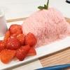 「Seoul Cafe(ソウルカフェ)」でSeoul Bingsu!ナイフで切って食べる糸巻きかき氷!?【新大久保・グルメ】