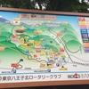 自然好きなら高尾山は6号路がオススメ