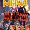【MHWI】ぶっ飛ばし御免【ティガ亜種】