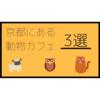 【動物とふれあおう】京都にある個人的に行ってみたい動物カフェ3選