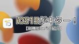 iOS15がキター!【新機能とバグ紹介】