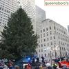 第86回 ロックフェラーセンター・クリスマスツリー点灯式の出演アーティスト決定! 【NYお役立ち情報】