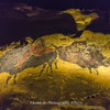 クロマニヨン人の壁画から、上野精養軒へ@ラスコー展 国立科学博物館・上野精養軒 東京都台東区2016