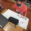 3年生:理科 ホウセンカの種を観察