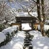 新春のぞみグリーン早得きっぷで京都の旅'2011(まとめ)