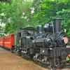 鉄ファン必見!!「阿里山森林鉄路車庫園区」 ~「嘉義」での早朝散策がてらに行って来ました。