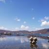 北海道 余市町 船で巡る神秘のシリパとローソク岩