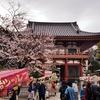 龍泉寺(目黒不動尊)の桜見てきた!【2】