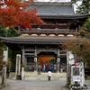 日本 谷汲山華厳寺の今年の紅葉