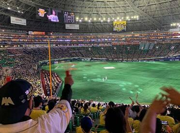 メガホンと拍手の熱狂。2020年初のホークス観戦記 in 福岡PayPayドーム