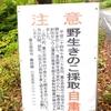 富士吉田 市「三つ峠」山麓の山あい 「野生きのこ採取自粛」の注意看板