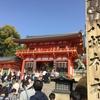桜満開!~八坂神社・円山公園・高台寺~