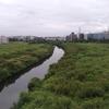 Tsurumi River
