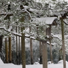 雪景色シリーズ(その5)「徽軫灯籠」