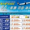 宮古島の下地島空港にスカイマーク就航!テスト期間の搭乗率が重要です