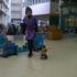 湊川の東山商店街の小猿さん、全然言うこと聞いてくれなくて困りました。