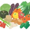 酵素~第九の栄養素~ 酵素の生産と潜在酵素