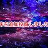 【低位株(ボロ株)投資】共栄タンカー株を追加購入!
