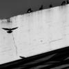 ARCHITECTURE@KOMAZAWA OLYMPIC PARK