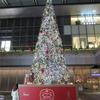 メリークリスマス!!! からの~!!