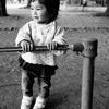 【家族オススメ】昭島市にある憩いの場である昭和公園に行ってみた。