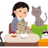 ストレス解消グッズ!コスパ最高なおすすめ癒しグッズ5選!