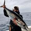 トンジギ〜ビンチョウマグロジギング釣行とベイトとの関連性