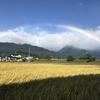 台風一過、晴れた空に虹がかかったよ【安曇野】