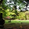 杉崎賢次郎 日本が誇る庭園