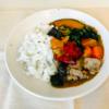 『ベジ活スープ食』レビュー!カレーを食べてみた感想!【ウェルネスダイニング】