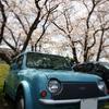桜2012 & DATA08W