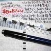ねこ日記(6/10~6/12) #万年筆 #ねこ #ほぼ日手帳 #日記