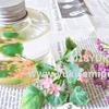 ハーバリウムオイルを100均で購入!セリアのナチュラルな造花で作ってみたよ
