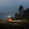 【ウイスキー未経験者向け】初心者に勧めたいおすすめのウイスキー