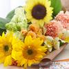 【日比谷花壇】hibiyakadan.comでお得に花を購入する方法!ポイントサイト経由!